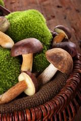 Fresh mushrooms in basket.
