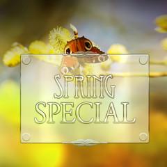 Spring Special - Glas -R