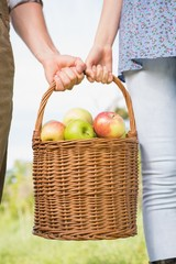 Couple holding basket of apples