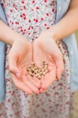 Woman showing hands of grain