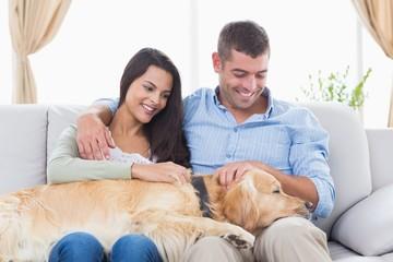 Couple stroking Golden Retriever on sofa