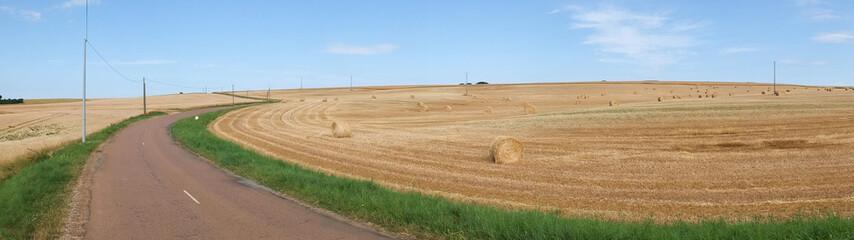 petite route départementale dans la campagne de côte d'Or