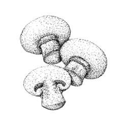 Champignon Mushrooms In Pointillism Style