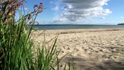 Auf der Insel Rügen, am Ostseestrand