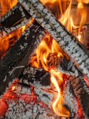 barbecue wood fire
