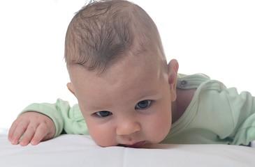 Portrait of a baby boy. White background.