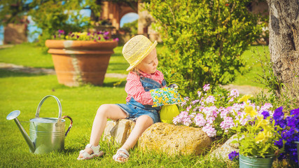 Cute little girl doing garden work between colorful flowers.