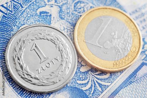 euro & złoty - 78856687