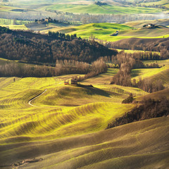 Fantastic scenery painted light in Tuscany with long shadows