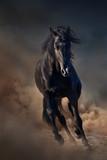 Beautiful black stallion run in desert dust against sunset sky