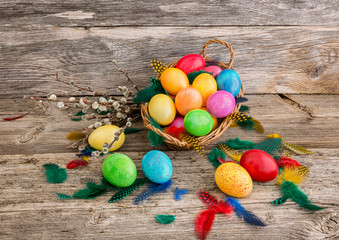 Colorful Easter eggs in basket and pussy-willow branches