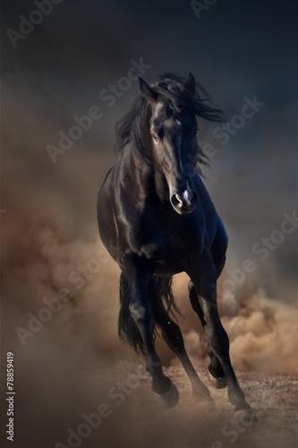 Beautiful black stallion run in desert dust against sunset sky - 78859419