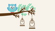 Owl on branch, Video animation, HD 1080