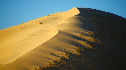 Golden Sand Dunes at Sunset