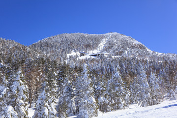 Mt.Yokote Ski resort in Shiga Highlands