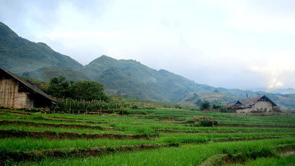 Farm House with Rice Terraces in Green Valley -  Sapa Vietnam