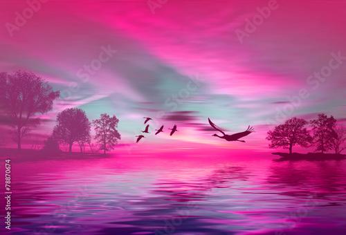 Plexiglas Roze Beautiful landscape with birds