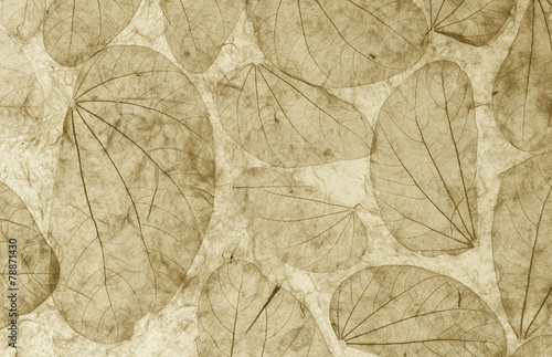 Natural leaves paper texture closeup vintage style - 78871430
