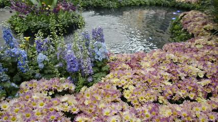 Scenic Flower Garden