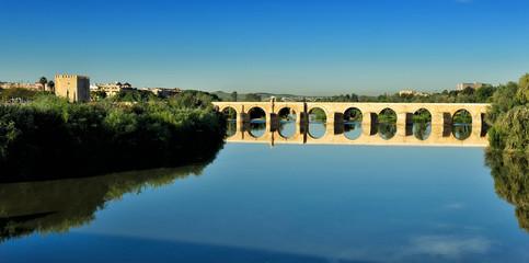 Romano Bridge, Cordoba, Spain