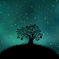 Tree silhouette night time, stars, sky