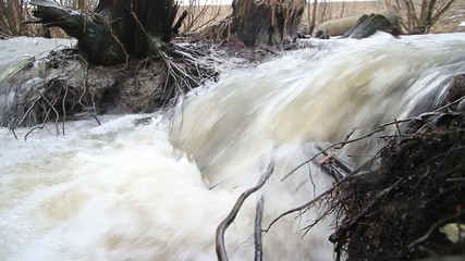 spring water and foam flows through the branches