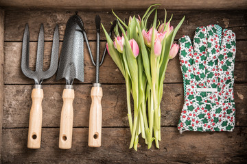 Flower and Garden tools