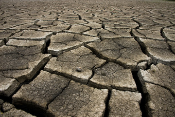 Dry cracked earth background, clay desert texture