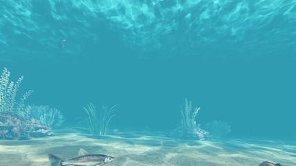 Deniz Altı