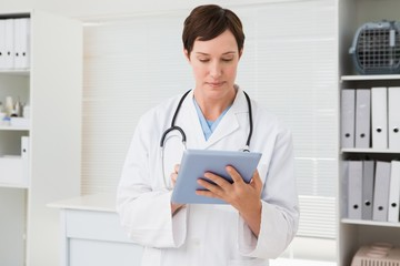 Veterinarian and holding tablet
