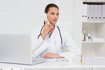 Vet phoning and using laptop