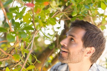 Happy man smiling at tree