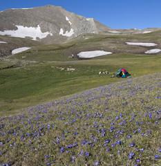 tent at Asian Caucasus, Azerbaijan
