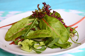 salad and lettuce on a white plate