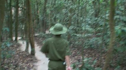 Vietnam Jungle with Soldier