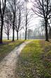 canvas print picture - Weg durch die Natur