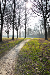 Weg durch die Natur
