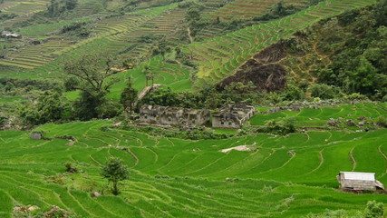 Zoom Out - Above View of Abandon Buildings with Rice Terraces in Valley Sapa Vietnam