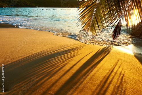 Foto op Aluminium Strand Beautiful sunset at Seychelles beach with palm tree shadow