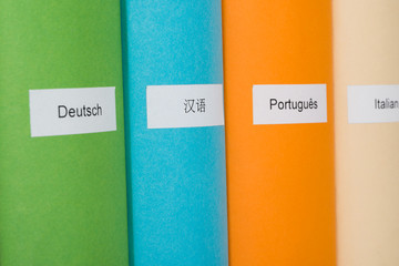 Multicolored Books Of Different Languages