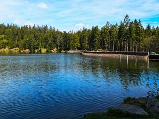 Lac du Forlet