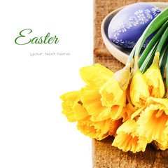 Easter setting with yellow daffodils