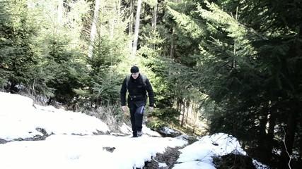 Wandern im Schneewald