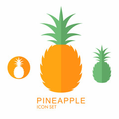 Pineapple. Icon set