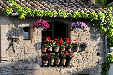 Arles, facciata tipica