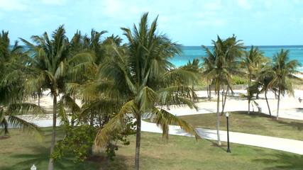 Time Lapse of Miami Beach Park 2 of 5