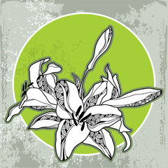 Vintage round frame with lilies on a light green background