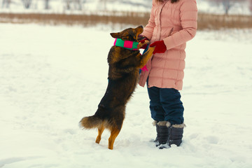 Girl playing with dog in winter outdoors