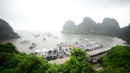 Tourist Boats Dock at Island Bay  - Ha Long Bay Vietnam
