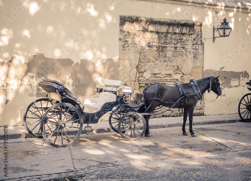 Horse carriage - 78922479